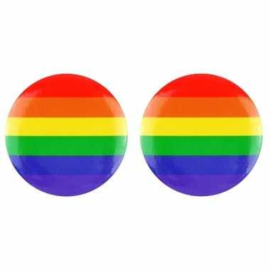 2x regenboog pride kleuren mini tas pin/broche 2 cm