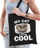 Britse korthaar katten tasje zwart volwassenen en kinderen my cat serious is cool kado boodschappe