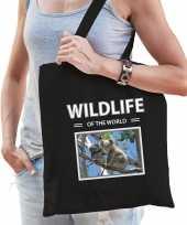 Koala tasje zwart volwassenen en kinderen wildlife of the world kado boodschappen tas 10265452